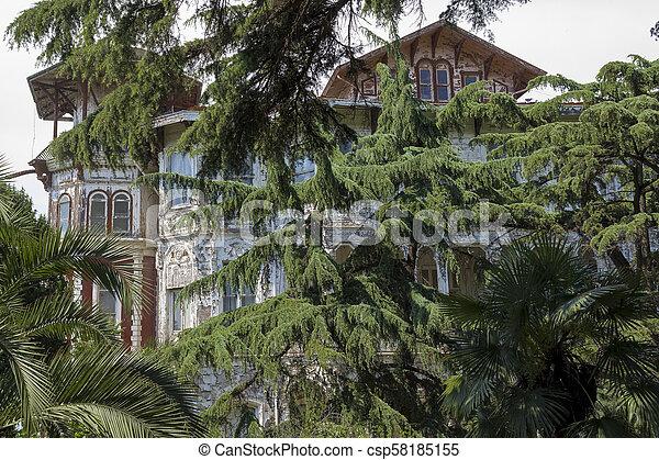 Alte historische Villa in Buyukada, Istanbul - Truthahn. - csp58185155