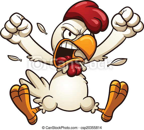 Angry Chicken - csp20355814