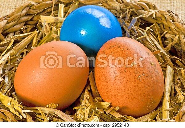 Ei in einem Nest - csp12952140