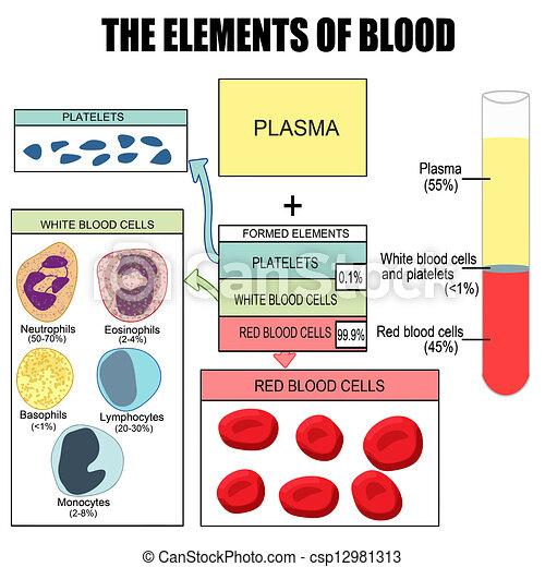 Die Elemente des Blutes - csp12981313