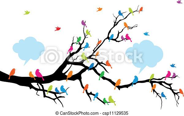 Farbvögel auf Baum, Vektor - csp11129535