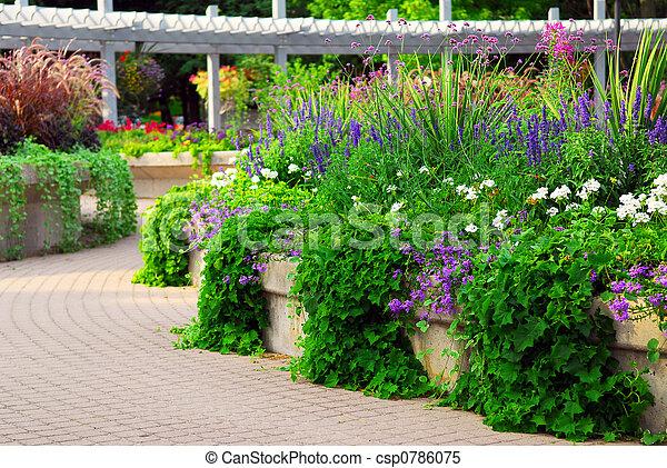 Formaler Garten - csp0786075