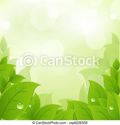 Frische und grüne Blätter - csp6236358