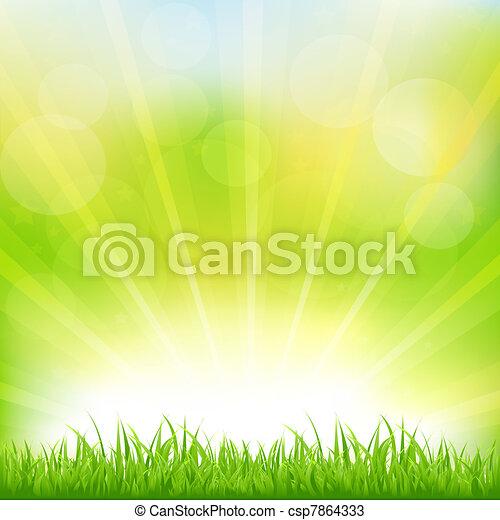 Grüner Hintergrund mit grünem Gras und Sonnenbrand - csp7864333