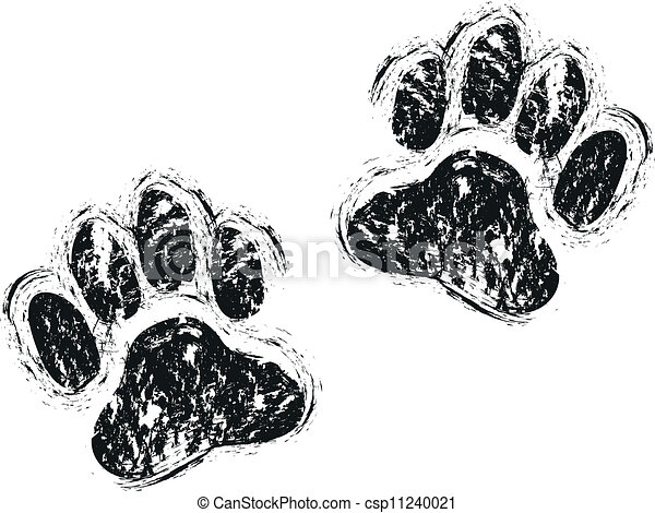 Hundepfoten - csp11240021