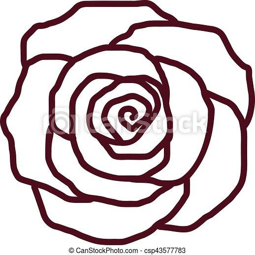 Rose-Pal-Struktur - csp43577783